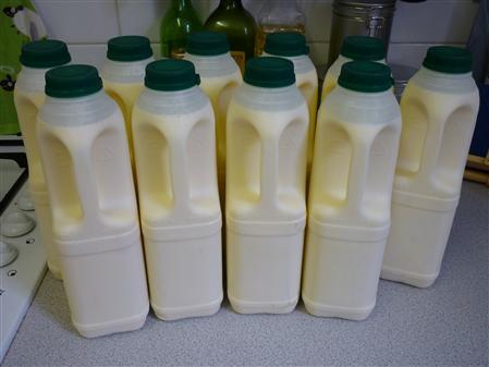 20 pints raw milk